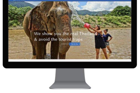 techno bird website design